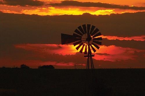Somewhere in Iowa. Love the old windmills