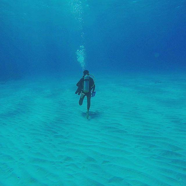 【sadanarishozo】さんのInstagramをピンしています。 《Good morning!この道、どこまで続いていくのでしょうか?海の中を歩いていたときの様子です(^o^) これが意外と難しいものです。 #ダイビング#diving #divingtrip #自由#freedom #free #fun #楽しい#砂地#ビーチ#sea#ocean #marine #海#メキシコ#カンクン#mexico #cancun #underwater #uwphotography #blueworld #gopro #hero4 #beach #awesome #爽やか#リゾート#instatravel #instanature》