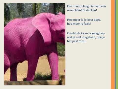 De les van de roze olifant - YouTube