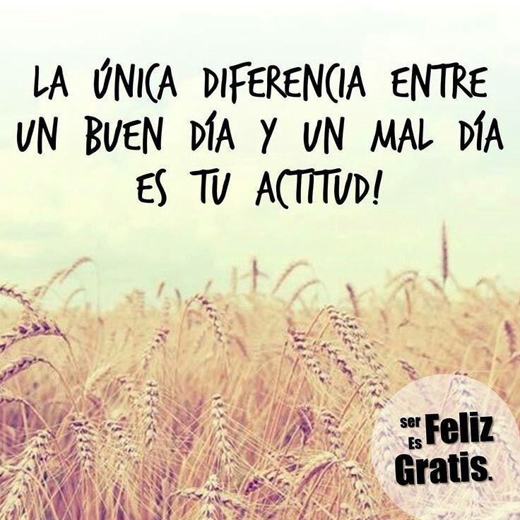 La unica diferencia entre un buen dia y un mal dia es tu actitud!