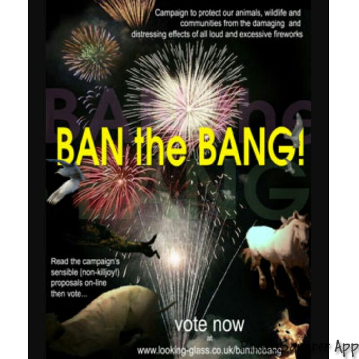 Fireworks should be banned