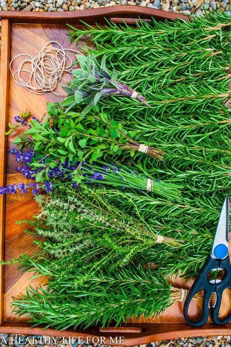 Kitchen Garden Preserves 17 Best Images About Kitchen Herb Garden Ideas On Pinterest