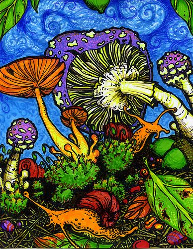 psychedelic mushrooms essay example Free essay: side effects of the drug psilocybin there have been many experiments and personal testimonies documenting the side effect behavior changes and.