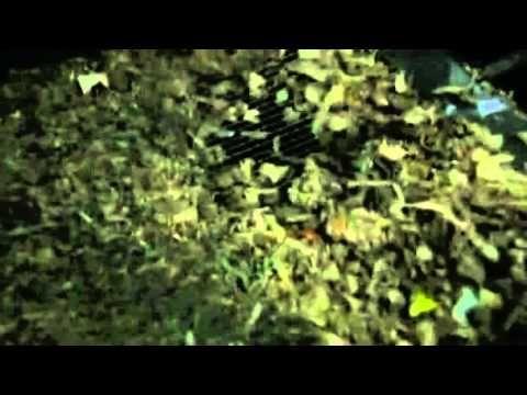 Filipino inventor turns plastic waste into fuel - YouTube