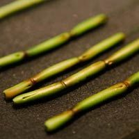 How To Make Sugar Bamboo for Asian-Inspired Cakes