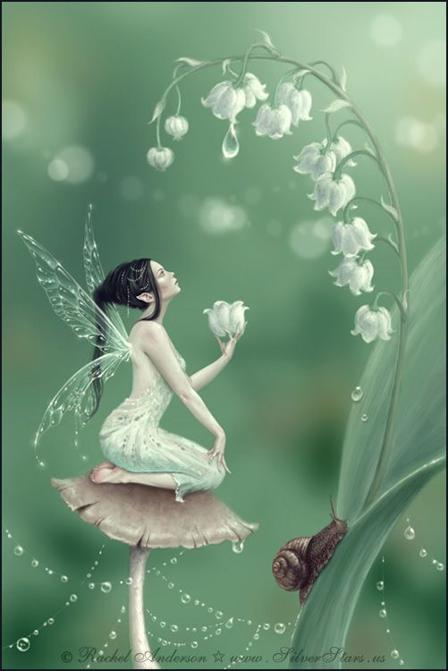 pictures from Rachel Anderson deviantart | Lily of the valley - Rachel Anderson