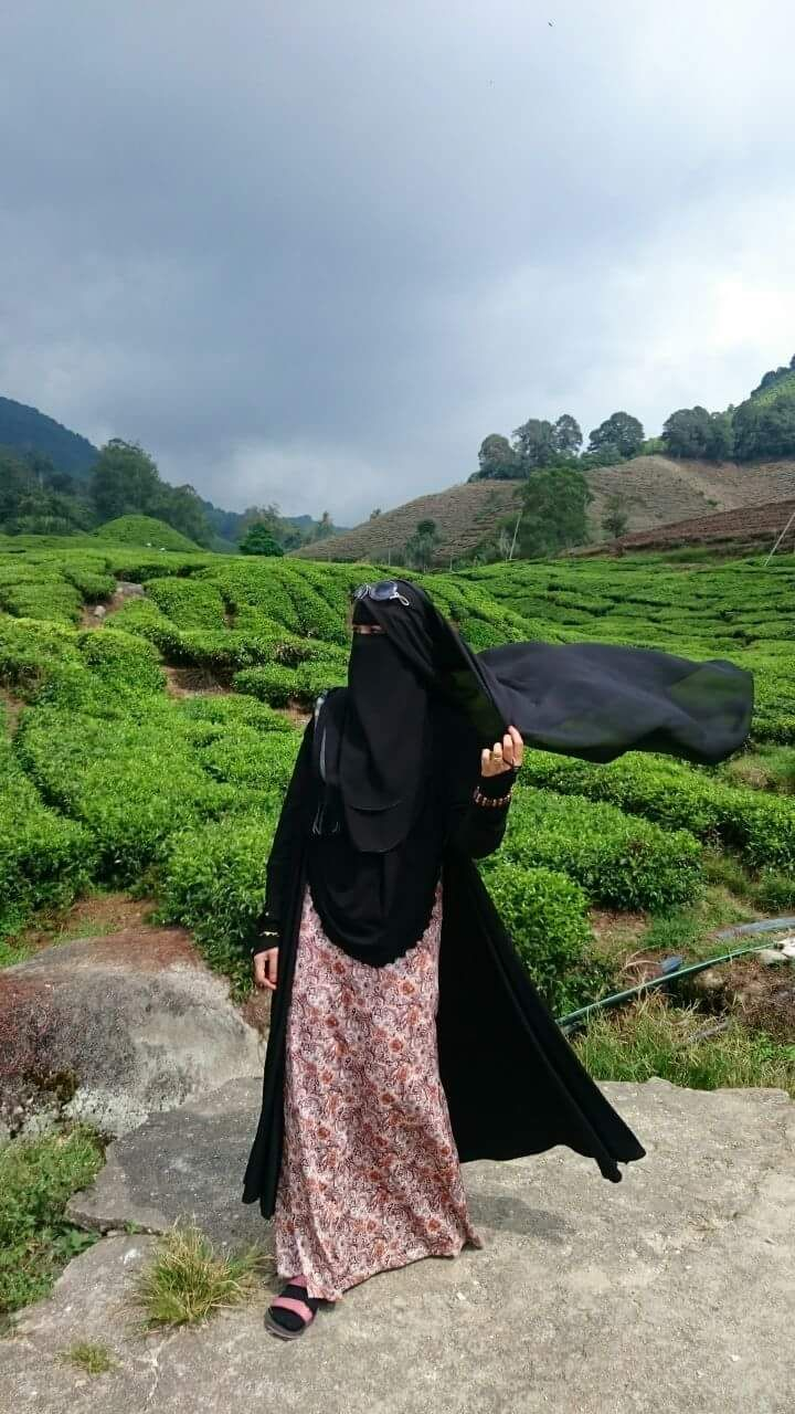 Tea Fields, on a Windy Day in Niqab