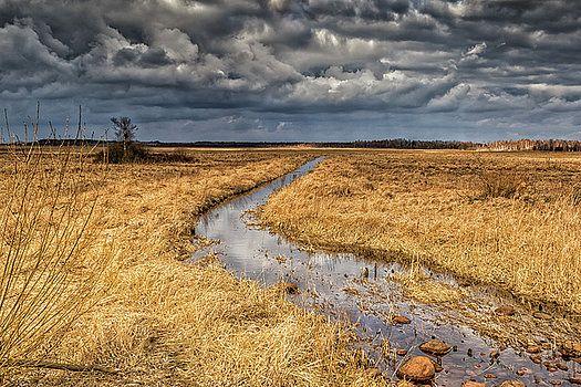 Landscape by Katarzyna Szymanska