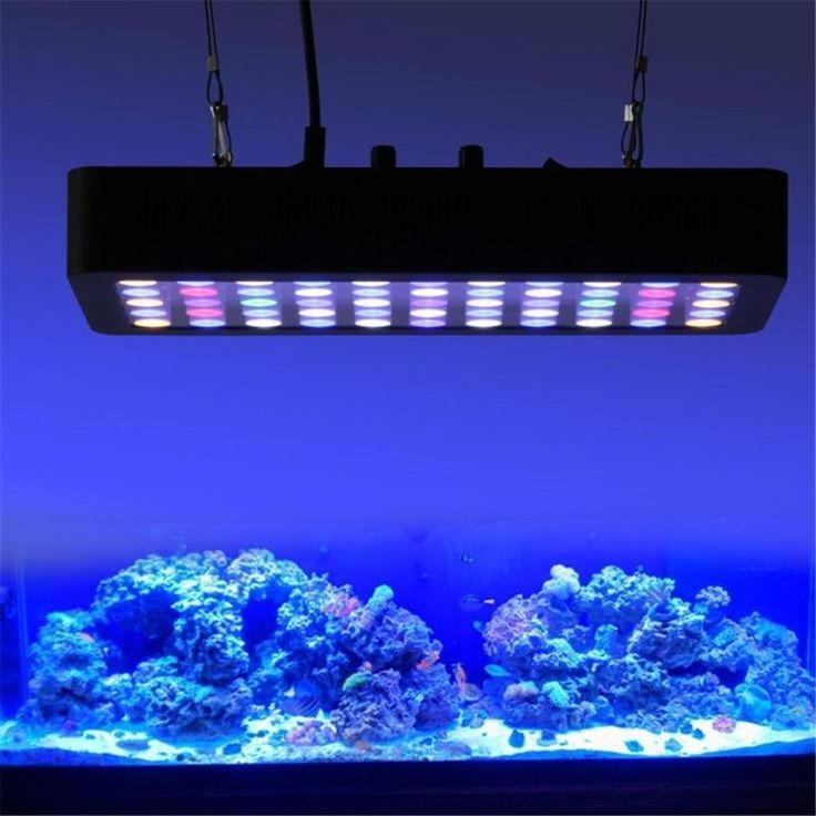 25 best ideas about led aquarium lighting on pinterest. Black Bedroom Furniture Sets. Home Design Ideas