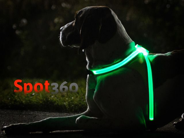 Lighted dog vest! Check it out on kickstarter! The world needs this so i hope they get more backers!!!