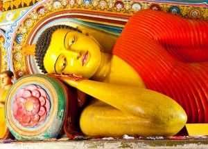 Exotic Destinations Luxury Sri Lanka holidays 008