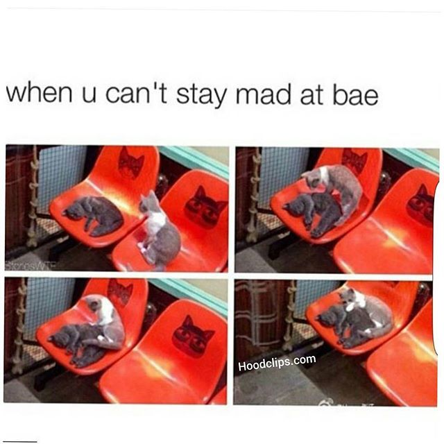 Lmaoo bae is just crazy lol