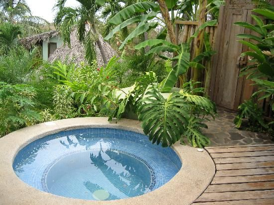 19 best images about pools plunge pool on pinterest for Garden plunge pool
