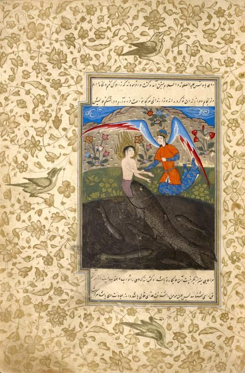 Yûnus (Jonah) disgorged by a giant fish is offered clothing by an angel. (18 Shawwâl 984 [8 January 1577])