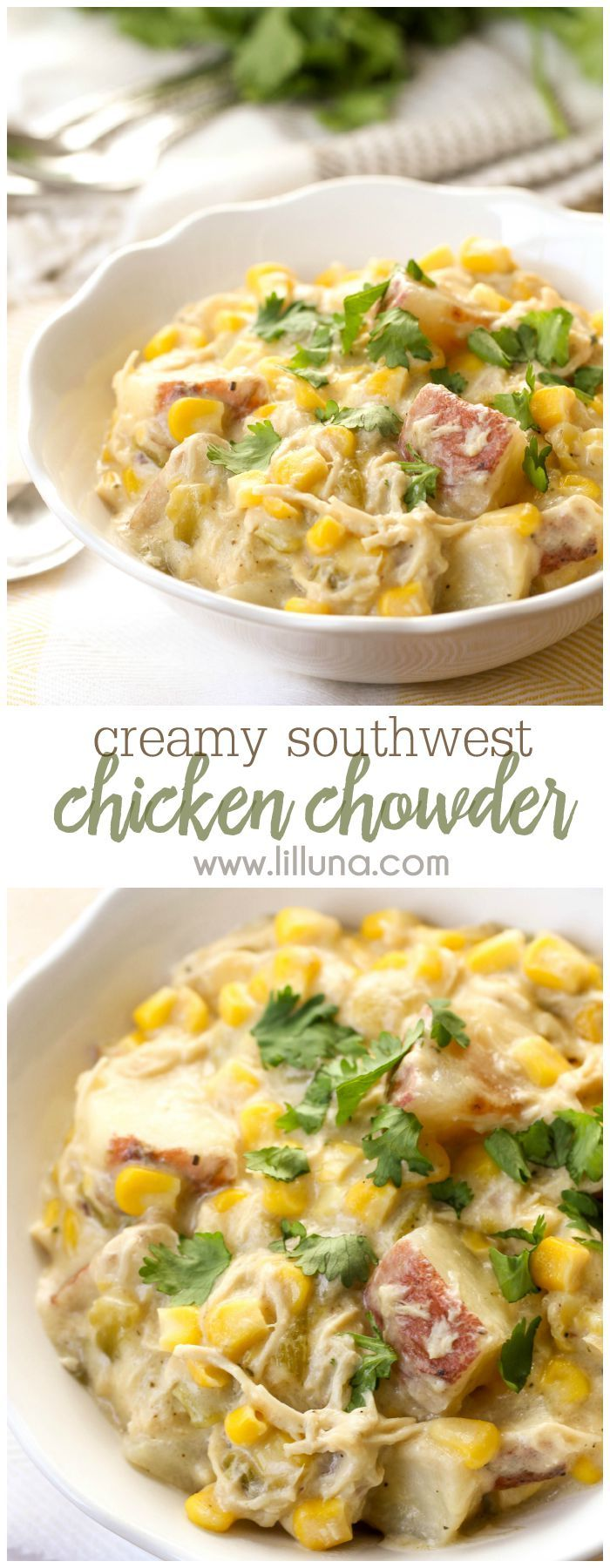 Super hearty and delicious Southwest Chicken Chowder recipe. It's so easy to make and is so full of flavor - the whole fam loved it!! Get the recipe on { lilluna.com }