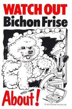 10 Images About Bye To You And Yous Bichon Fris On