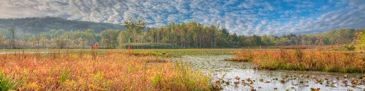 """Cuyahoga Valley National Park...love having this in my """"backyard!"""""""