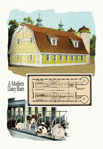 Best 25 modern farmhouse plans ideas on pinterest for Windsong project floor plan