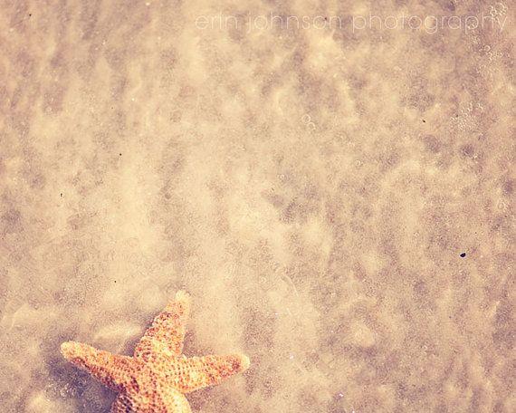 starfish decor beach photography beige art ocean decor home decor wall art The One That Got Away by eireanneilis