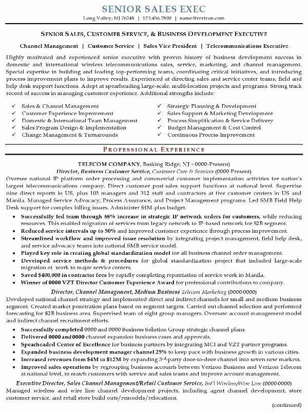 Senior Executive Resume Examples Inspirational Resume Sample 16 Senior Sales Executive Resume Career In 2020 Executive Resume Marketing Resume Sales Resume