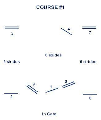 9 jump course