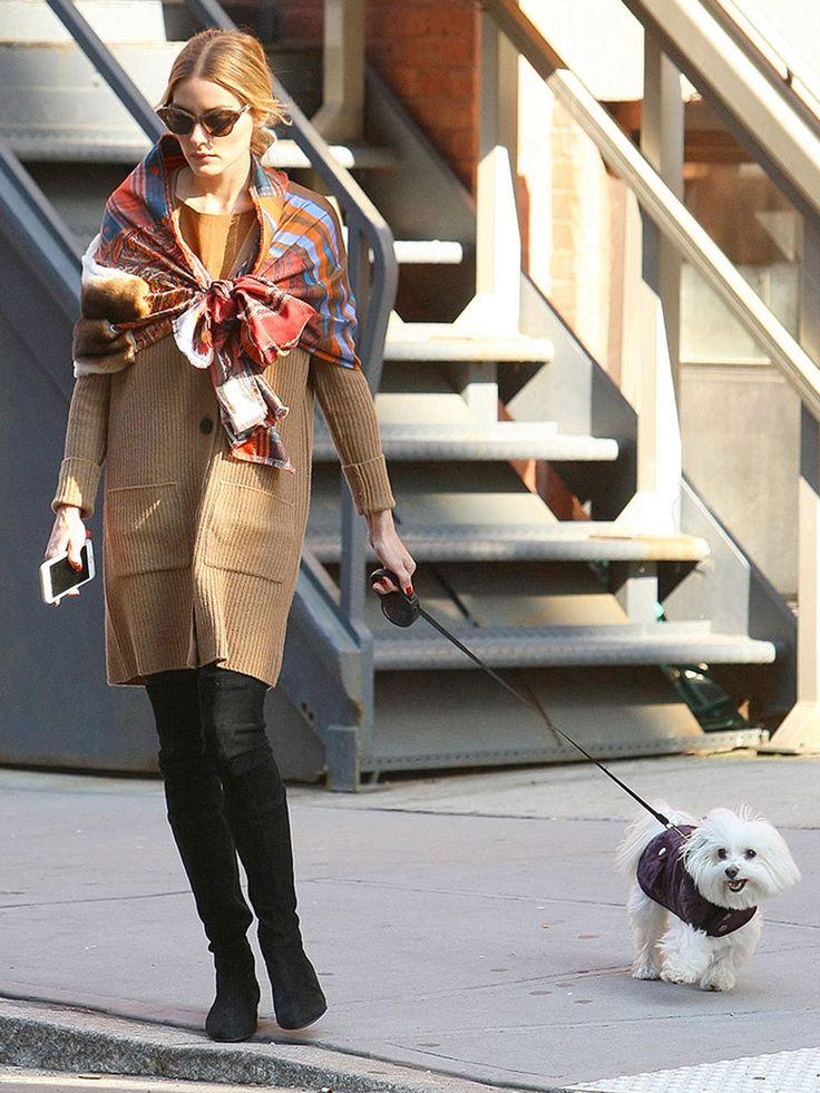 オリヴィア・パレルモ(Olivia Palermo)/おしゃれ上級者のお散歩コーデをチェック
