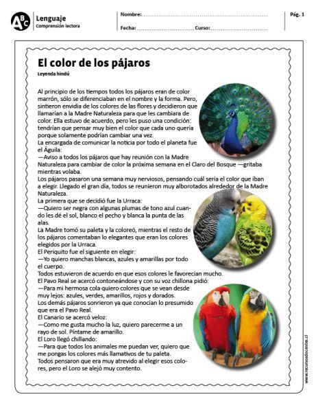 """El color de los pájaros"""""""