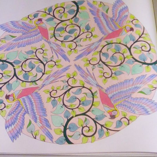 Take A Peek At This Great Artwork On Johanna Basfords Colouring Gallery Coloring
