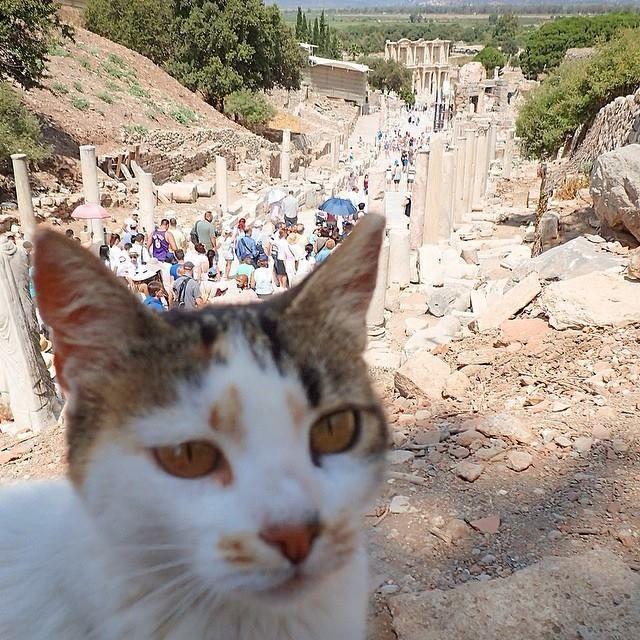 Ephesus in Selçuk, İzmir