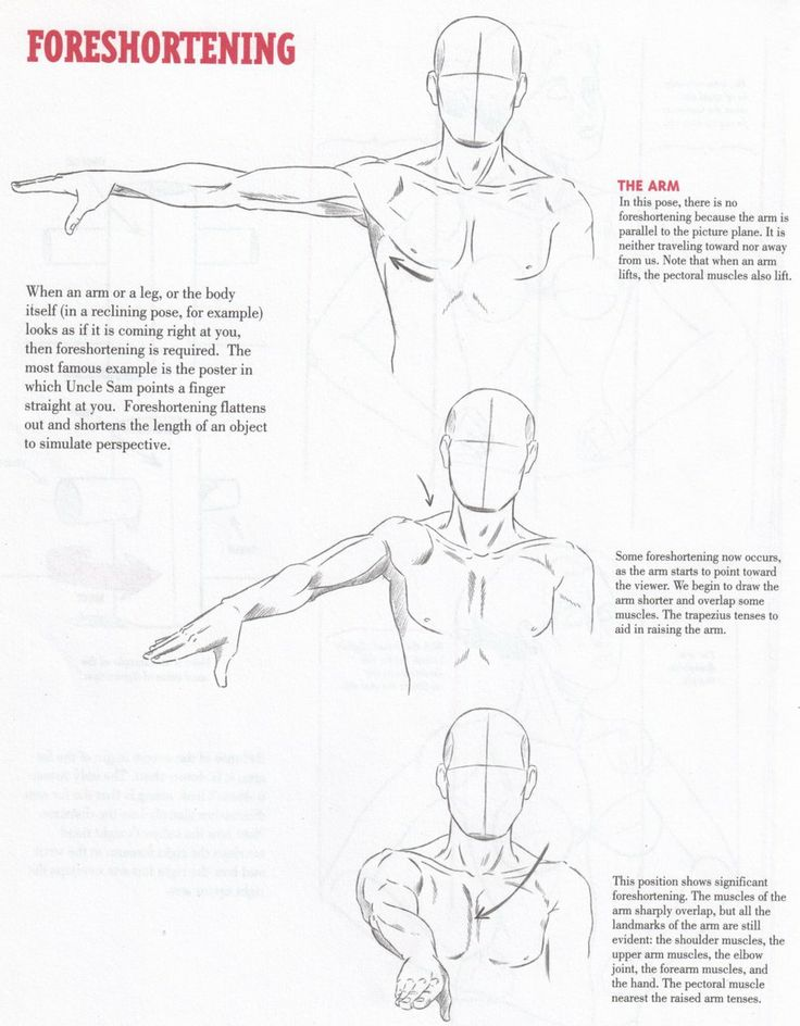 FORESHORTENING TUTORIAL by ~Christopher-Hart on deviantART