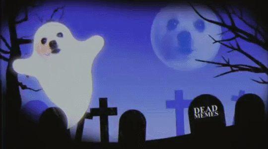Feliz Halloween!: Al fin una festividad que sirve de razón suficiente para ver una y otra vez este video de un perro ladrando el tema de Ghostbusters. [x]