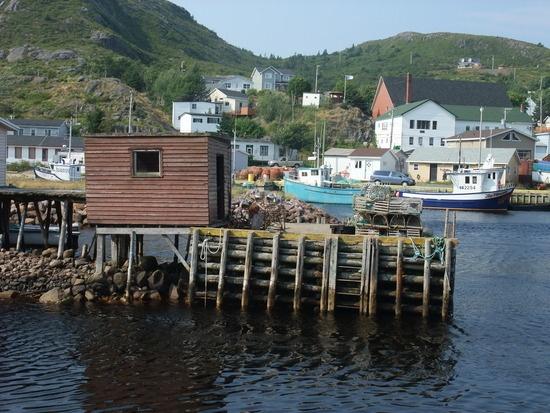 Witless Bay Newfoundland, Canada