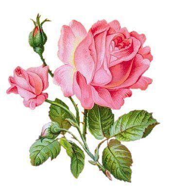 decoupage flores - Mis Manualidades y muchas cosas - Álbuns da web do Picasa