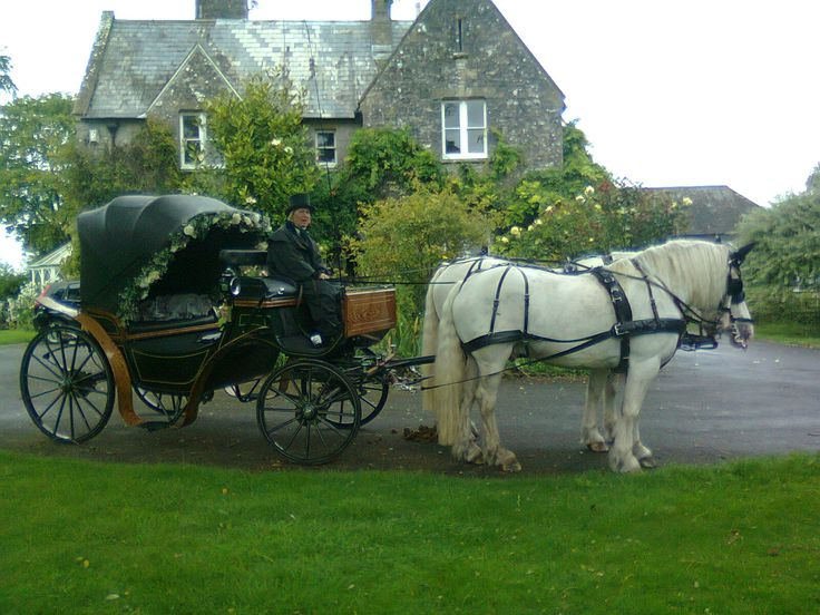 victorian horse and carriage | Classic dreams horse and carriage hire | Wedding Galleria