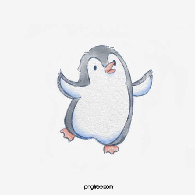 Gray Hand Drawn Penguin Cartoon Character Element Penguin Gray Animal Png Transparent Clipart Image And Psd File For Free Download Penguin Cartoon Cute Penguin Cartoon Penguin Watercolor