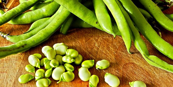 Le fave hanno la particolarità di essere l'unico legume che può essere mangiato sia crudo che cotto. Il dottor Mozzi lo consiglia nella dieta di tutti i gruppi sanguigni.