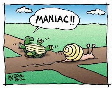 Image result for at a snail's pace