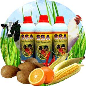 hub : 0813-5555-5216 pupuk padi nasa, pupuk padi yg bagus, pupuk padi organik, pupuk padi alami, pupuk padi berimbang, pupuk padi gogo, pupuk padi anti rebah, pupuk padi cair, pupuk padi, pupuk padi yang bagus
