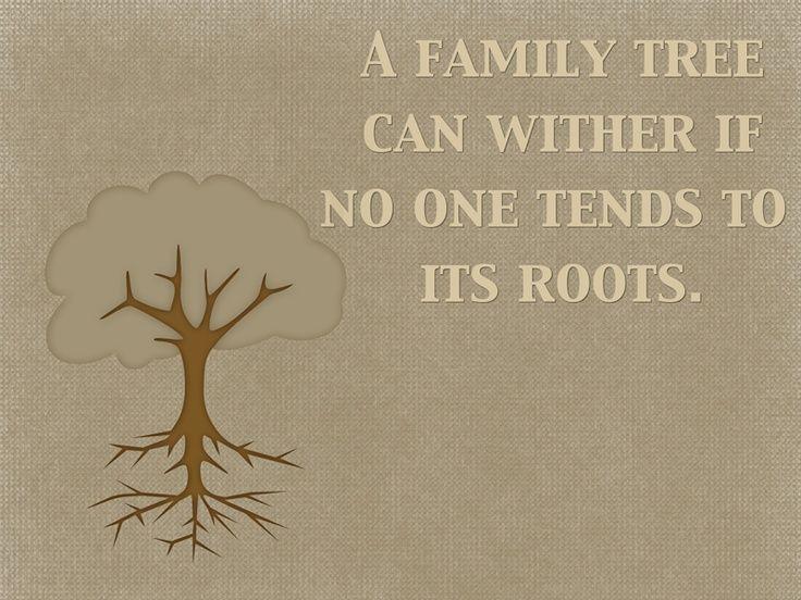 1000 family tree quotes on pinterest family history