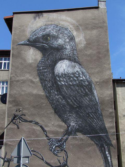 KATOWICE Street Art Festival-Poland | Flickr - Photo Sharing!