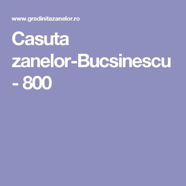 Casuta zanelor-Bucsinescu - 800