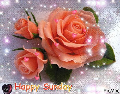Happy Sunday good morning sunday sunday quotes happy sunday good morning sunday sunday gifs sunday images sunday pictures sunday quotes and sayings