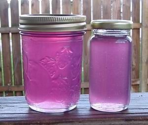 7 Jelly Recipes : Cranberry-Pepper, Lilac, Spruce Tip, Corn Cob, Violet, Rose Petal and Queen Annes Lace