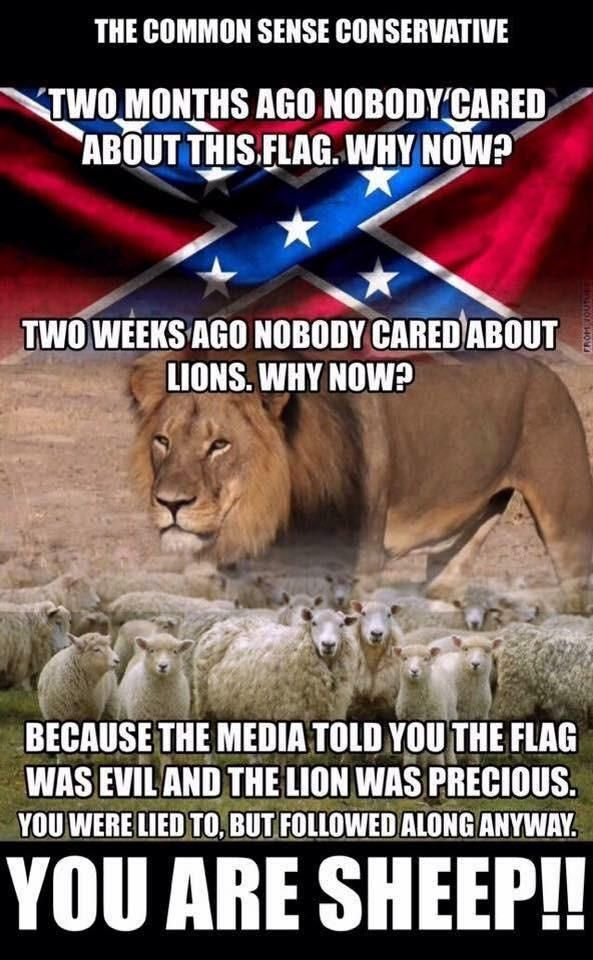 "I don't like the term ""sheep"". However, it it's time we wake up to the indoctrination!"