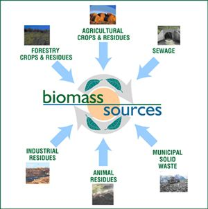 Biomass Resource Base
