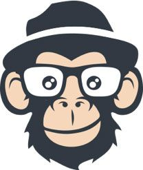 Joe the Monkey | JoeZoo