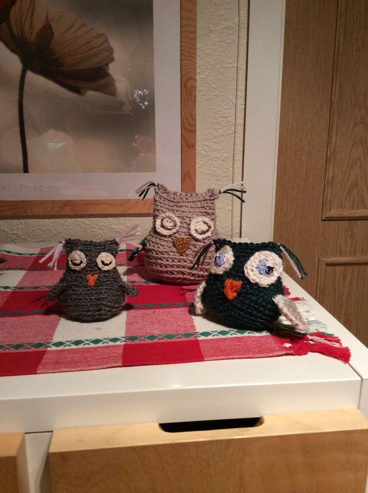 Owl x 3