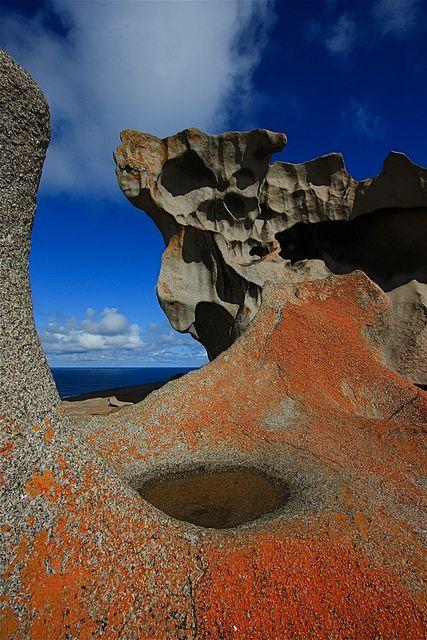 ♥ Kangaroo Island ~ South Australia