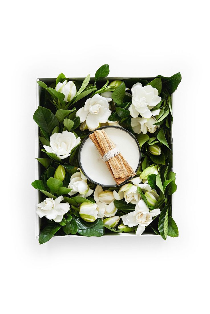 16 best fresh flower delivery images on pinterest gardenias fresh high camp gardenias high camps signature gardenia and palo santo candle captures the essence of izmirmasajfo Gallery