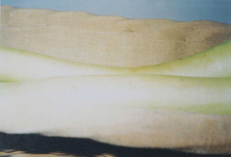 アメリカ抽象表現主義の第2世代の作家として位置づけられてきたサイ・トゥオンブリーは、即興的な線や絵具、数字やアルファベットを組み合わせた絵画や彫刻作品を多く残している。その一方で、画業と並行し未発表のまま写真制作を続けていた。そんなトゥオンブリーの写真が一堂に集結する展覧会「サイ・トゥオンブリーの写真-変奏のリリシズム-」展がDIC川村記念美術館(千葉)で開催されている。輪郭がおぼつかないほど光にあふれた写真からわかるトゥオンブリーが眺めていた景色とは? トゥオンブリーの写真制作の裏側や本展の見どころとともに、トゥオンブリーの表現手法について本展担当学芸員の前田希世子に聞いた。